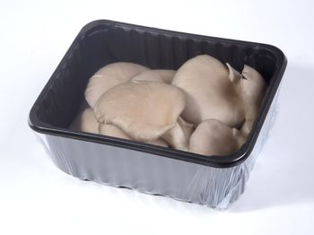 Boczniaki opakowanie 250 g