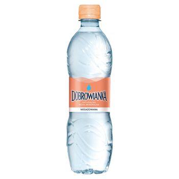 Dobrowianka Naturalna woda mineralna niegazowana 500 ml