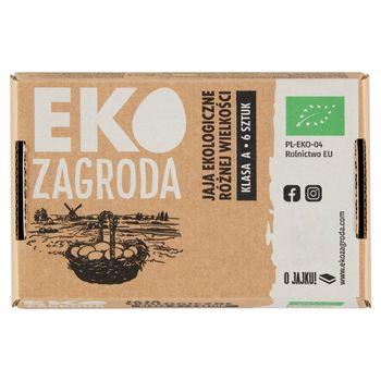 Eko Zagroda Jaja ekologiczne różnej wielkości 6 sztuk