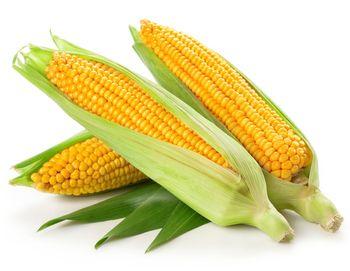 Kukurydza tacka 3 sztuki